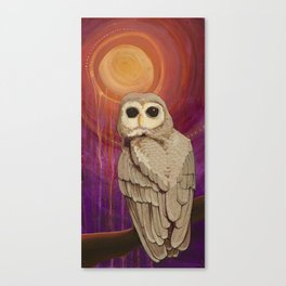 Skulking by Owl Light Canvas Print