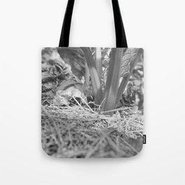 Swiss Chard Tote Bag