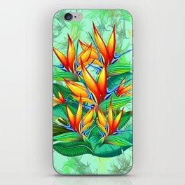 Bird of Paradise Flower Exotic Nature iPhone Skin