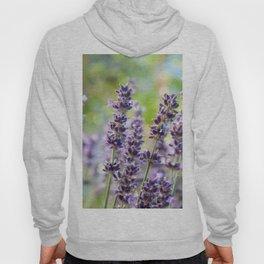 Lavender Flowers #1 #floral #art #society6 Hoody