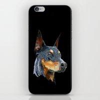 doberman iPhone & iPod Skins featuring Doberman by Det Tidkun