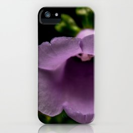Cologne Botanical II iPhone Case