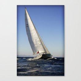 sail racer Canvas Print