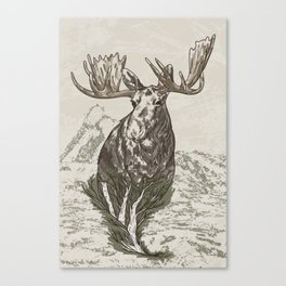 Guardian of the Hinterland (moose) Canvas Print