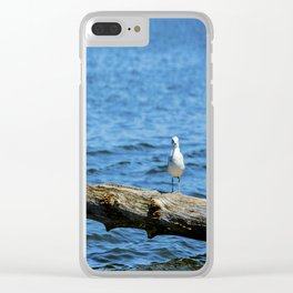 Seagull on Driftwood Clear iPhone Case