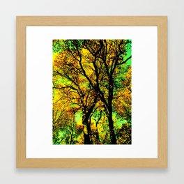 Oak Glen 2 Framed Art Print