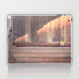 Cat, Kyushu, Temple Laptop & iPad Skin