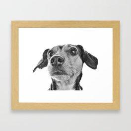 Dolly Mae Framed Art Print