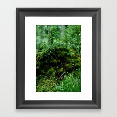 Sprite Stump Framed Art Print