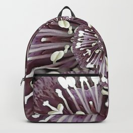 Hellebore Spiral - Abstract Photographic Art by Fluid Nature Backpack