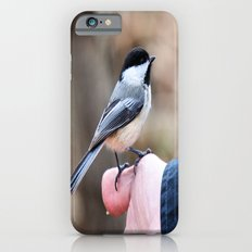 lets feed the birds iPhone 6s Slim Case
