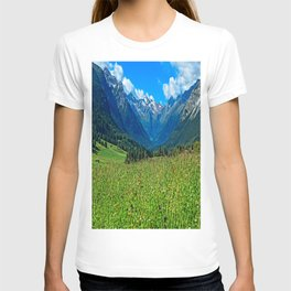 Bergwiese mit Talschluss T-shirt