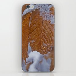 snow and leaves iPhone Skin