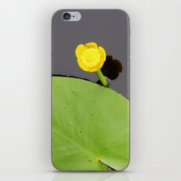 Yellow waterlily with lily pad iPhone Skin