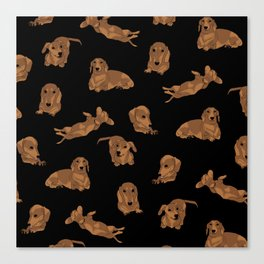 Short Haired Dachshund Pattern Canvas Print