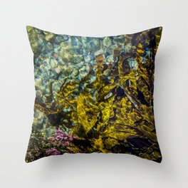 rockpool Throw Pillow