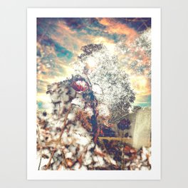 Snow, Sunshine and Sky Art Print