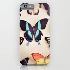 Butterfly Collection iPhone 6s Slim Case