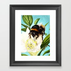 Bee on flower 5 Framed Art Print