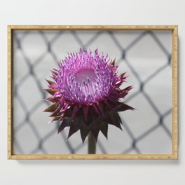 Bull Thistle Serving Tray