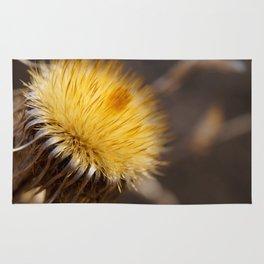 Dry flower Rug