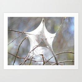 Bright White Star Shaped Caterpillar Cocoon Art Print