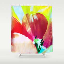 Abstract Of Tulips Shower Curtain