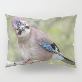 Shy colourful Jay bird Pillow Sham