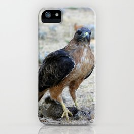 Red Tailed Hawk Catch iPhone Case