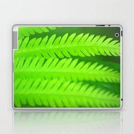 a green Fern Laptop & iPad Skin