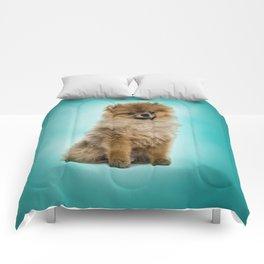 Cute Pomeranian Dog Comforters