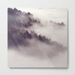 mountainside  fog Metal Print
