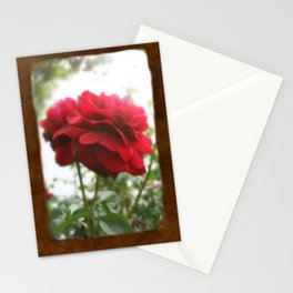 Red Rose with Light 1 Blank P3F0 Stationery Cards