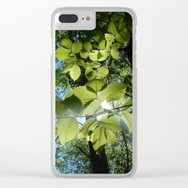 Sunlight Canopy IV Clear iPhone Case