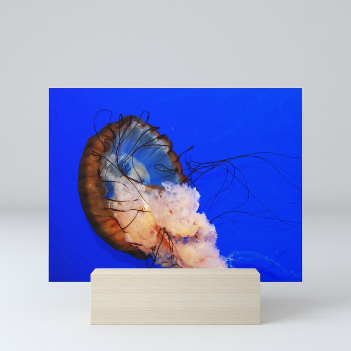 Underwater Life Mini Art Print