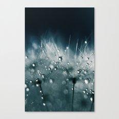dandelion teal Canvas Print
