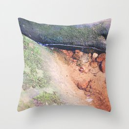Life in the Undergrowth 03 Throw Pillow