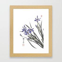 Blue Iris Orchid One Framed Art Print
