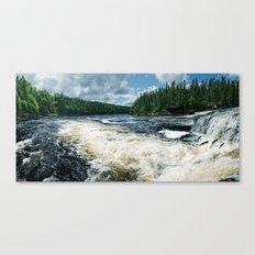 Swim Upstream Canvas Print
