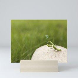 Smoking Praying Mantis Mini Art Print