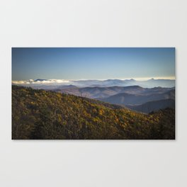 In framing Canvas Print