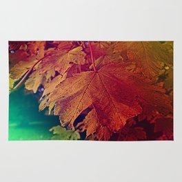 colours of autumn Rug