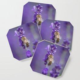 Lavender Bee Coaster