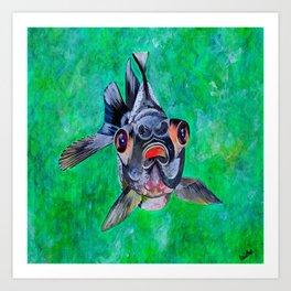 Blackmoor Goldfish Art Print