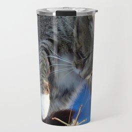 White Pawed Tabby Cat Playing With Winged Insect Travel Mug