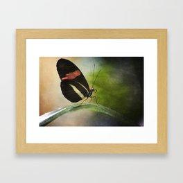Butterfly Ink. Framed Art Print