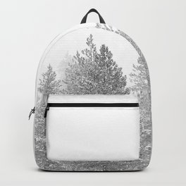 Snow Day // Black and White Winter Landscape Photography Snowing Whiteout Blizzard Backpack