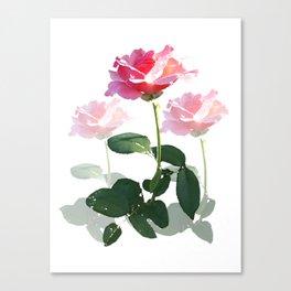 Triple Pink Rose Canvas Print