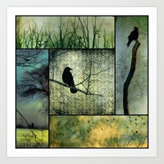Square Of Crows Art Print