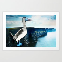 The Blue-footed booby Art Print